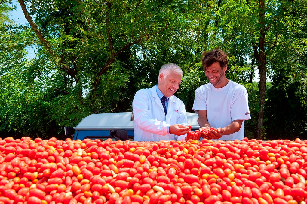 Quality_control_of_tomatoes_used_for_Barilla_red_sauces